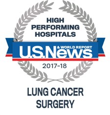 Lung Cancer Surgery Large